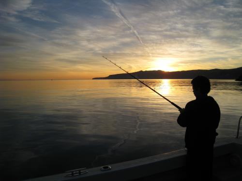 Kyle Merker fishing Santa Cruz Island at daybreak